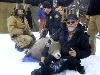 District Wildlife Manager Mike Crosby, recognized as Wildlife Officer of the Year,'checks and prepares a bighorn sheep for transplant this winter.