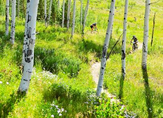 Competitors in the Epic Singletrack Series ride down Hawk Trail during the Race the Rendezvous on Saturday morning, Aug. 10, in Fraser.