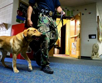 Garrett Duncan of the Rifle Police Department brings his dog, Tulo, into the Granby Elementary School to do a test search during a K-9 training seminar on Thursday afternoon, June 12, in Granby. More than 20 police dogs from a dozen agencies were participating in the three-day program to practice narcotic and explosive detection, tracking and apprehension. The seminar was put on by the Colorado Police K-9 Association, Fraser-Winter Park Police Department and Granby Police Department.