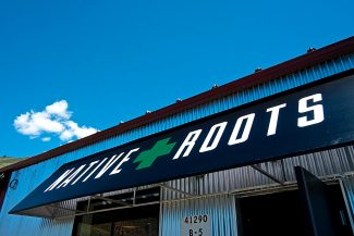 After Sweet Leaf Pioneer in Eagle, Native Roots is the second retail marijuana dispensary to arrive in Eagle County. Native Roots is located in the back part of the building that once housed the Route 6 Cafe in Eagle-Vail.