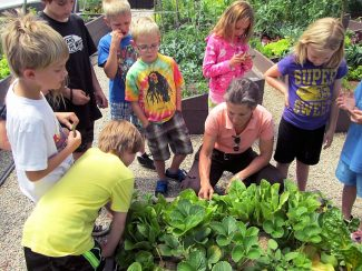 """Debbie Buhayer of Grand Community Gardens works with students at the Fraser garden. Leigh Edwards of the  Fraser Metropolitan Recreation District thanks Grand Community Gardens for welcoming Summer Day Camp kids to participate in these weekly gardening activities The children were introduced to various gardening techniques, helped plant various seeds, and tended their garden plots over the course of the summer. """"Debbie taught the children about the different types of herbs and vegetables growing in their gardens and the kids were excited to try beets, radishes, mint, potatoes, spinach, and other vegetables they grew (as surprising as it sounds!). Debbie brought zucchini bread and dried sweet potatoes for the kids to try, furthering the children's understanding of where our food originates,"""" Edwards said. """"It was very generous of Debbie to donate her time to offer this fun and educational program to our summer day camp kids."""""""