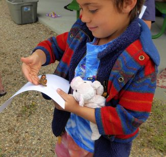 Indian Peaks Charter school student Psy Wofford-Turner releases butterflies into the wild on  Saturday, May 28.