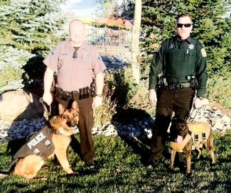 Fraser-Winter Park Police Department K-9 Argo and Grand County Sheriff's Office K-9 Ivan recently received bullet and stab protective vests thanks to the efforts of Vested Interest in K-9s, Inc, a Massachusetts based nonprofit organization. The made-to-order vests were recently delivered and will protect the K-9's from bullet and stab wounds as well as blunt force trauma.