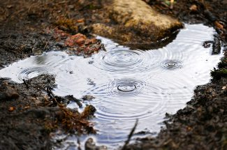 Raindrops create ripples in a small puddle of water on the Ice Hill trail on Saturday, June 29, in Winter Park.  Byron Hetzler/Sky-Hi News