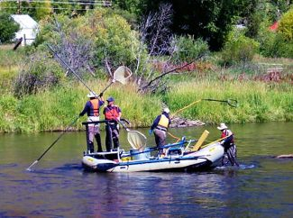 Colorado Parks and Wildlife personnel, performing electroshock operations for a fish population survey on the Colorado River, float downstream from Parshall on Tuesday afternoon, Sept. 24.