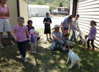 The last day of August the Hot Sulphur Springs Library had special visitors (a mama goat and her two babies) for story hour. Some older kids, parents, and several courthouse employees joined us. The Krempin family brought the goats.