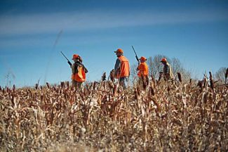 State to grow Public Access Program by 100,000 acres in time for hunting season