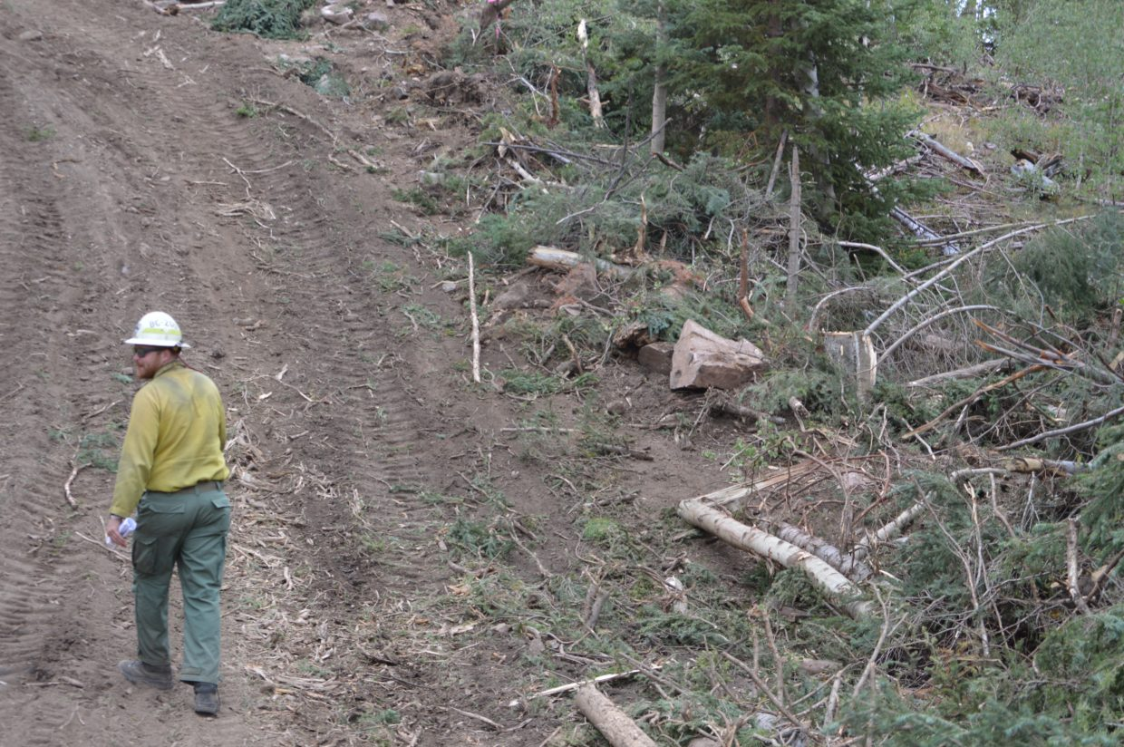 Task force leader John Haskvitz walks a dozerline near the edge of Old Park. The materials that were thinned earlier by crews in preparation for the fire are piled next to the line and will be pushed over the line when it's no longer needed.