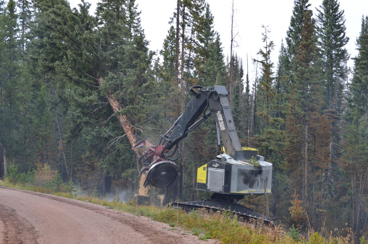 A feller buncher cutting trees along the Forest Road 100 to make the area safe for the public again.