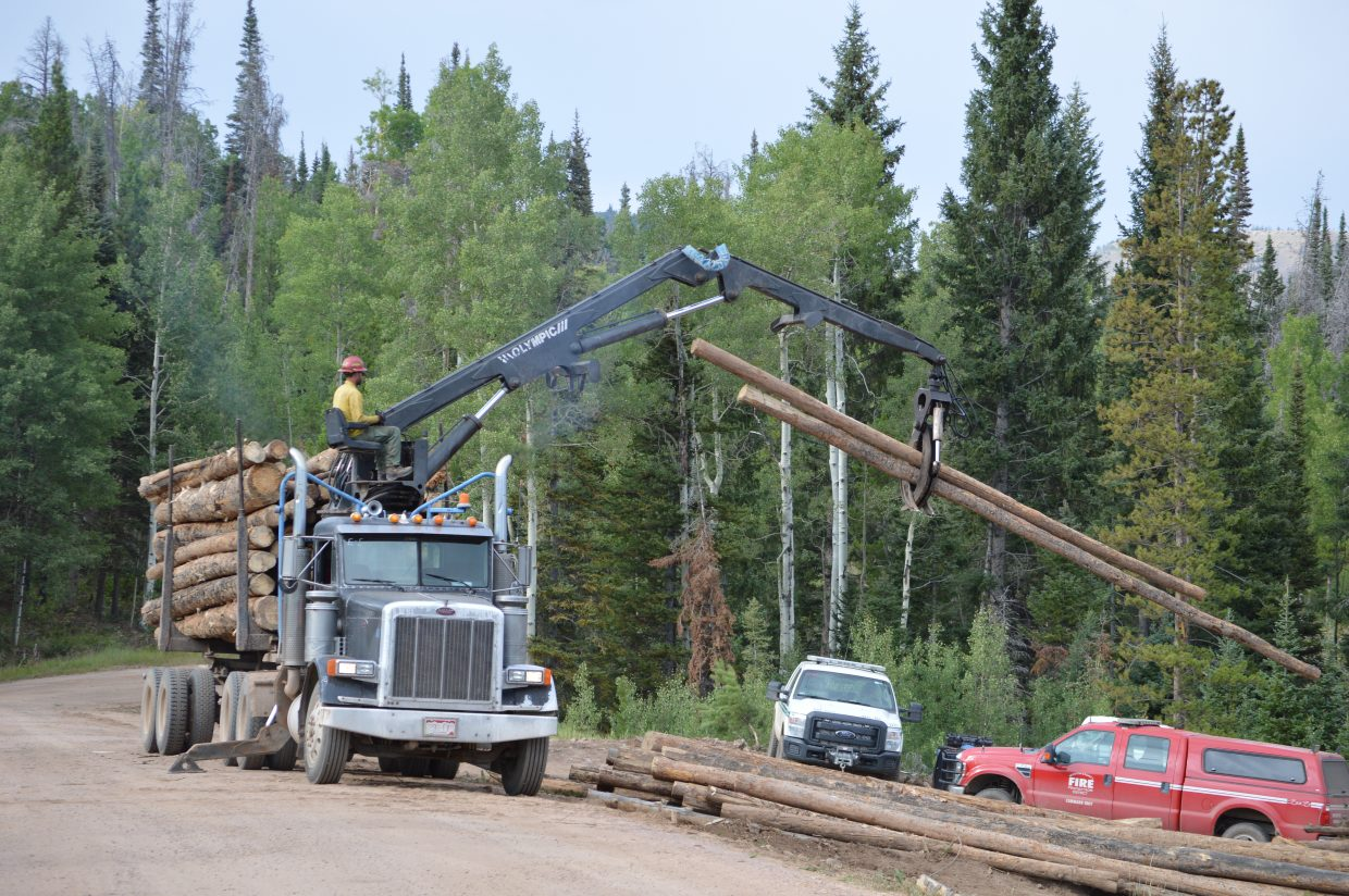 Salvaged timber is loaded on to a logging truck to be sold or consumed.
