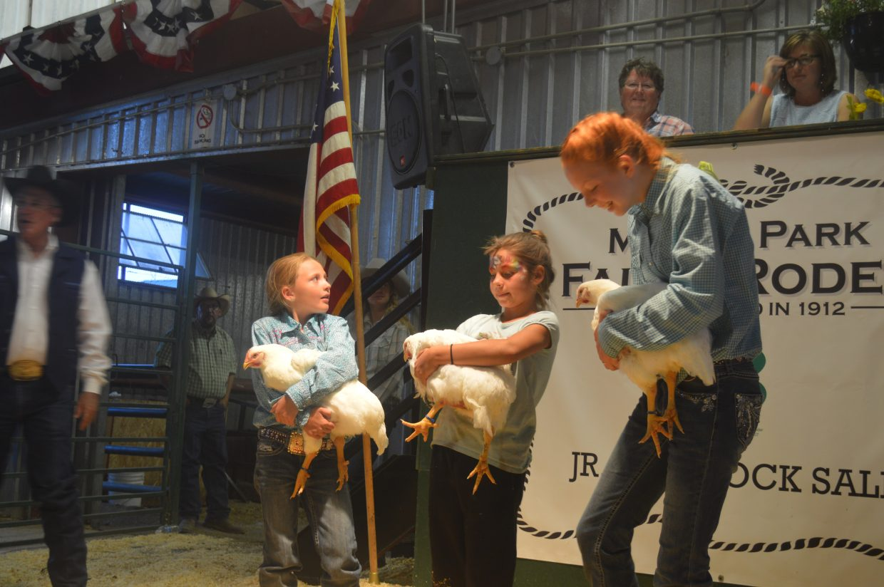 Chickens were one of a few fowl sold at the auction, which also included turkeys and ducks. Three lots of chickens raised $1,100.