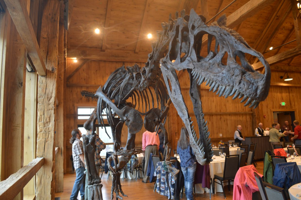 This year's Taste of History event featured an allosaurus skeleton because the first allosaurus fossil found was in Granby. Sheep herders in Grand County found what they thought was a petrified horse hoof, but was actually an allosaurus tail vertebrae.