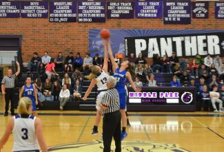 First round loss ends lady Panthers bid for state basketball title