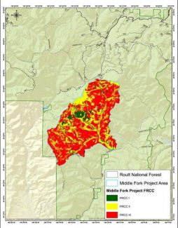 Forest Service planning fire mitigation efforts north of Parshall, seeking public input