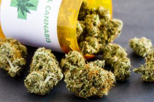 Higher than ever: New study links strong weed to psychosis
