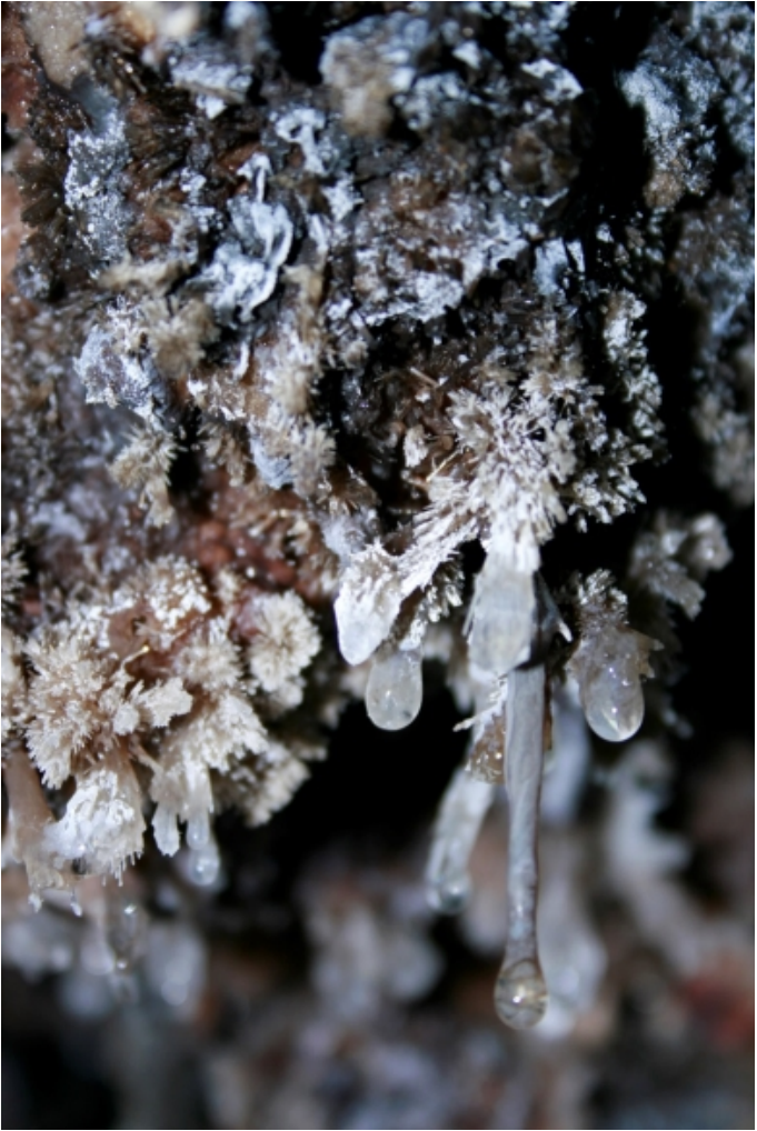 Snottites and gypsum crystals hang from the ceiling of Sulphur Cave on Howelsen Hill.