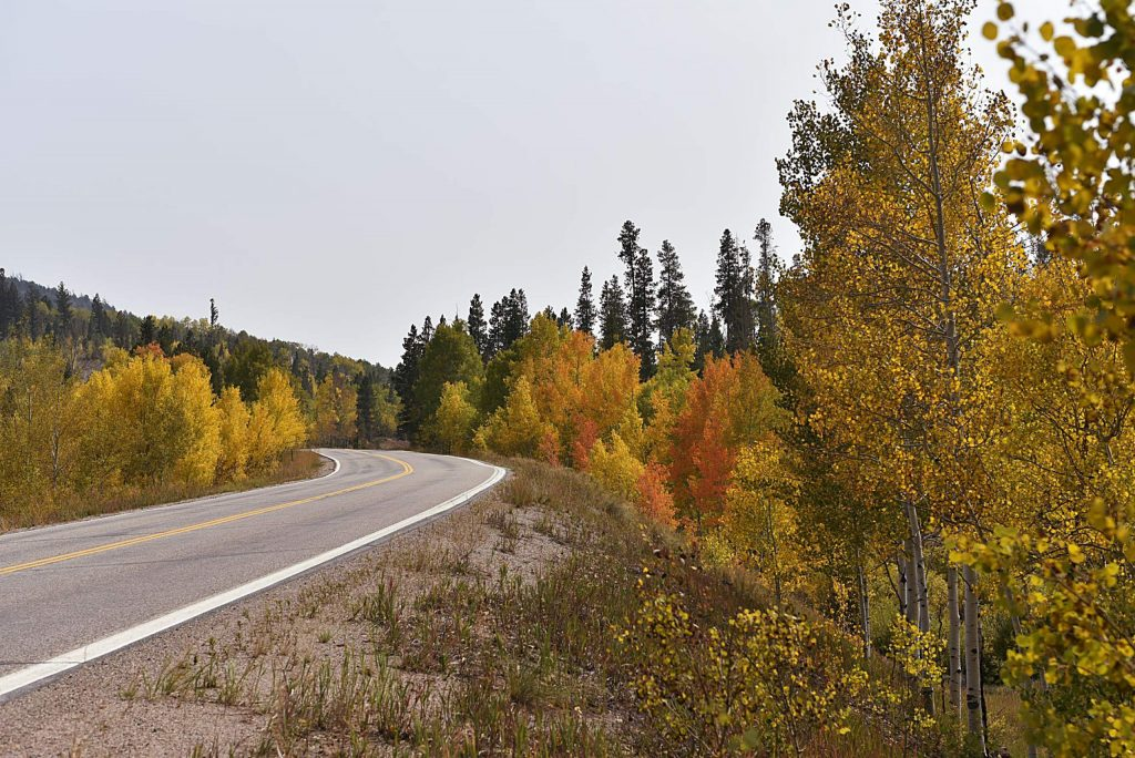Grand County roads are currently framed by vivid fall colors. The top five drives in the county feature incredible views of the changing leaves.